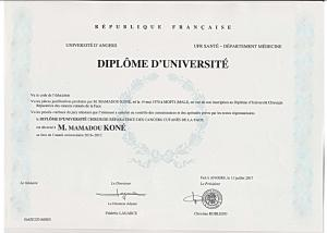 diplôme de DU